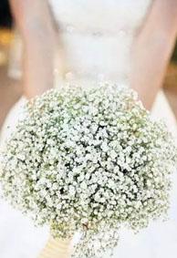 qq皮肤高清唯美婚纱大图个性网 新娘手捧花图片唯美