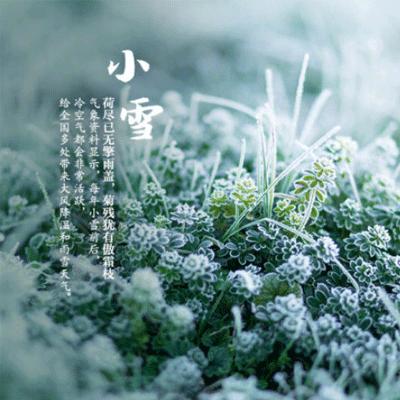 小雪节气风景图片大全带字 2019小雪节气朋友圈配图唯美