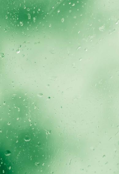 夏日最火壁纸图片小清新2019 绿色手机壁纸保护视力