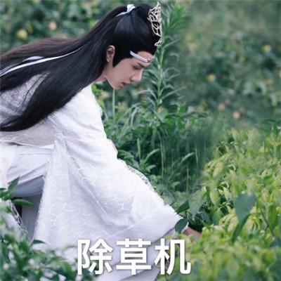 陈情令王一博表情包大全 抖音恶搞蓝忘机表情包图片