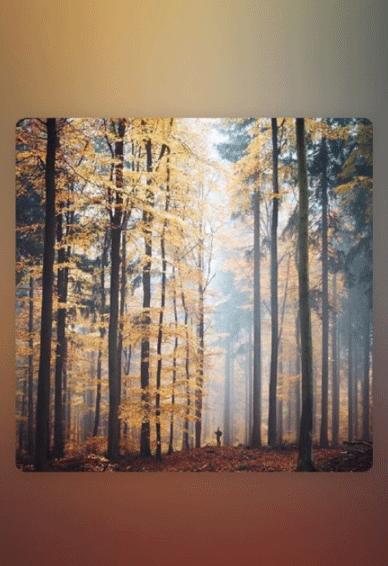 秋天壁纸大全唯美伤感 超高清秋天风景壁纸图片