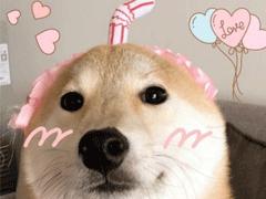给沙雕网名取个日本名字 沙雕搞笑日本网名大全五个字