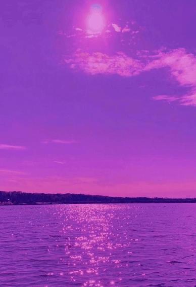 唯美紫色的意境手机皮肤  你这么好看请你吃咖喱鱼蛋
