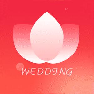 美婚礼软件appv16 手机版