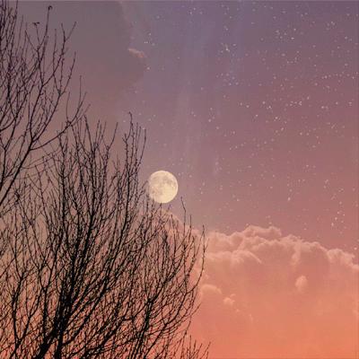 个性空间好看唯美的微信素材 月圆秋来十月运开