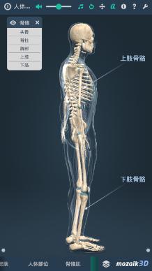 立体全身解剖模拟app