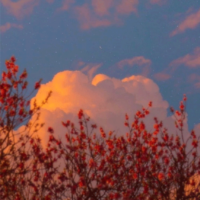 高雅有意境的唯美空间背景图片 我爱你一直到月亮那里