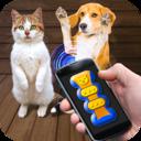 猫猫狗狗翻译器v1.1 免费版
