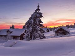 2021关于冬季下雪的唯美个性签名 温暖整个冬季的初雪签名