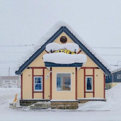 冬季唯美北海道雪景朋友圈背景图片 日日无事事复日日忙忙亦茫茫
