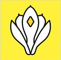 玉兰网appv3.7.2 安卓版