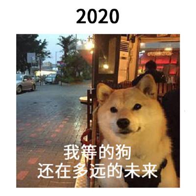 2021一组跨年的搞笑表情包大全