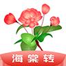 海棠网appv1.0 安卓版