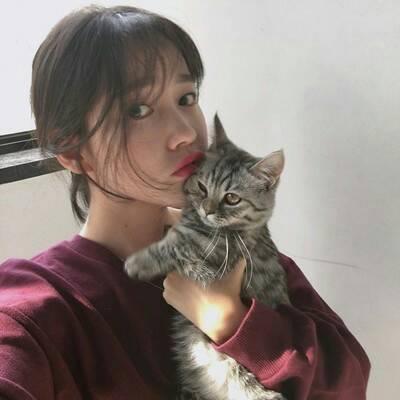 女生吸猫头像可爱呆萌 好看的女生和猫咪合照头像
