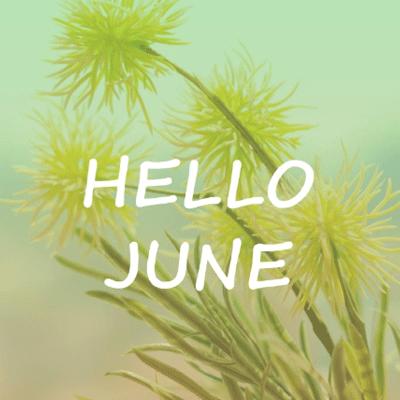 你好六月图片英文带字2020 最新6月图片唯美意境