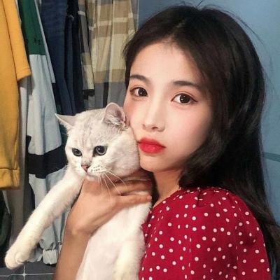 女生抱猫咪头像可爱好看 你是例外唯一偏爱