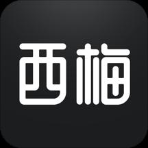 西梅(AI智能双语资讯)v2.2.8 最新版