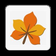小枫叶英语v2.17 最新版