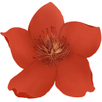 小红花直播音效助手v10.1.0 绿色版