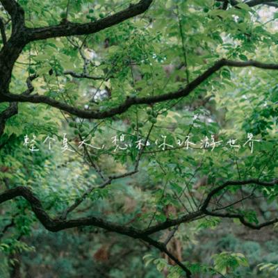 夏日风景picture唯美森系 summerfriend圈风景图