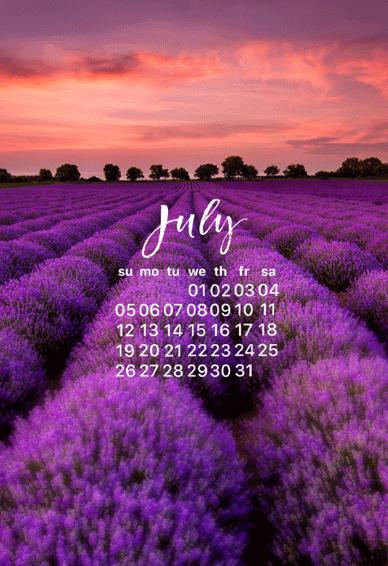 2020七月日历壁纸高清无水印 七月你好日历手机壁纸唯美