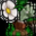 植物大战僵尸2010年度版修改器v1.2 绿色版