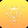 金豹网appv0.0.6 安卓版
