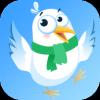 海鸥fast讯app
