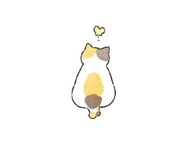 可爱cat 咪壁纸简约高清 白色背景cat 咪壁纸吸引人