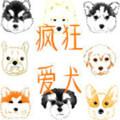 疯狂爱犬养狗赚钱-疯狂爱犬appv1.0 安卓版