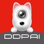 盯盯拍轻车机记录仪v1.0.0.0 安卓版
