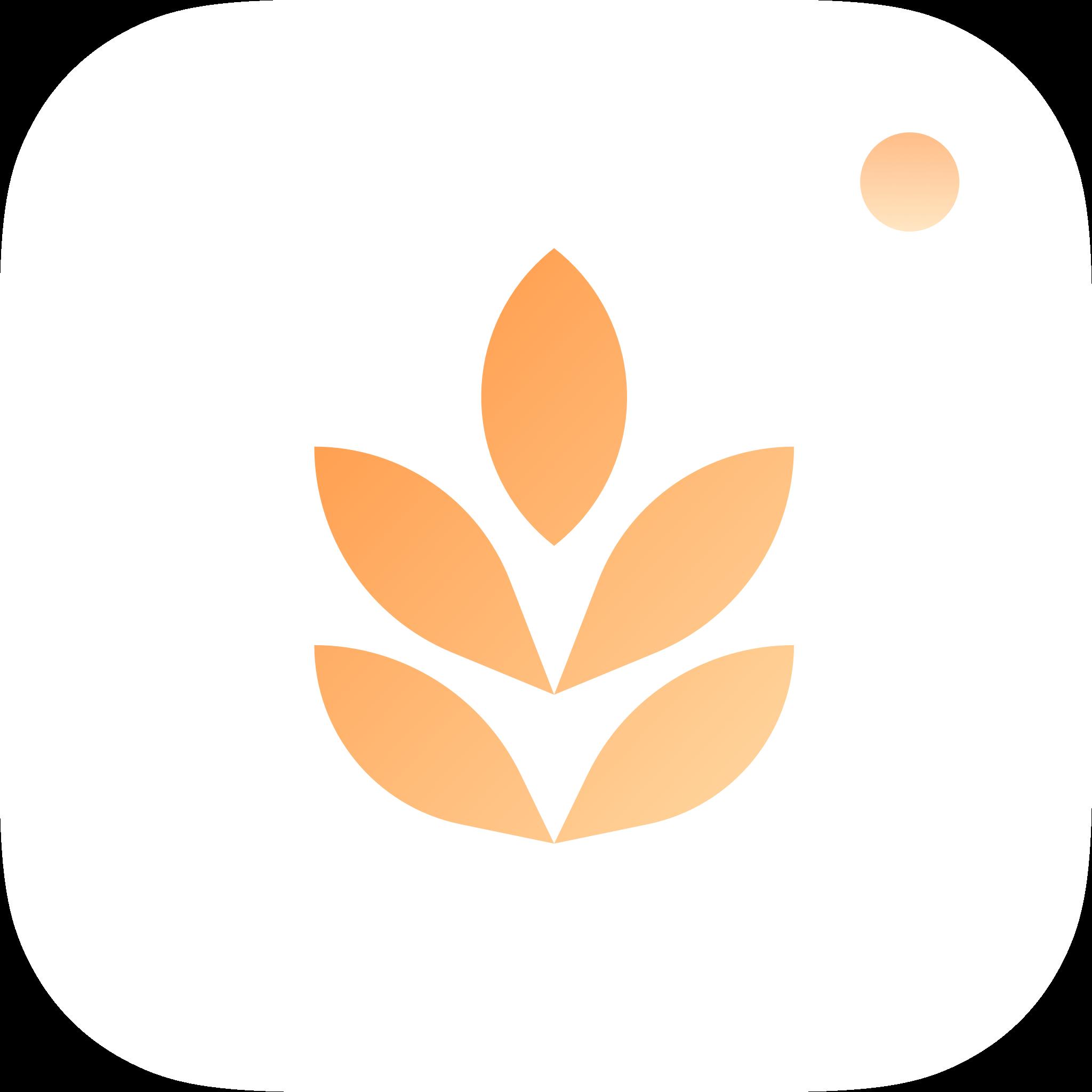 大麦相机appv2.2.0 安卓版