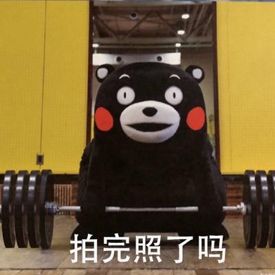 最新熊本熊举重表情包合集 熊本熊举重表情包无水印