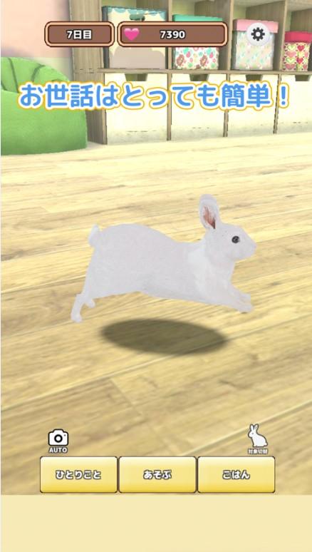 云端养兔子ios版v0.1.1 官方版
