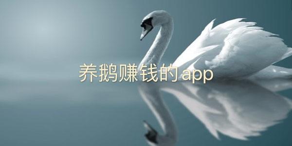 养鹅赚钱的Software-养鹅赚钱的app-手机养鹅赚大钱app