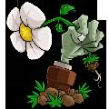植物大战僵尸冰雪版修改器v1.8.0.0 最新版