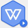 wps定制版永不升级2020