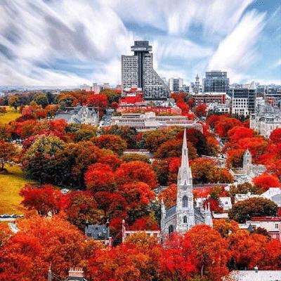 迎接秋天优美温暖人心的文案 简短唯美关于秋天文案