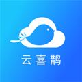 云喜鹊v1.0.0 最新版