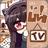 创咖ARLive(虚拟直播系统)v1.1.4 官方版