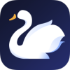 天鹅fast讯appv1.0.0 newest版