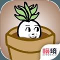一个萝卜一个盆v1.0 安卓版