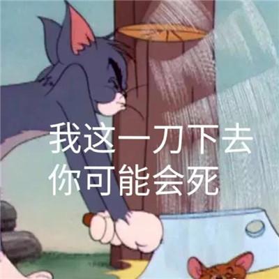 最新一组猫和老鼠的暴走可爱的表情包 明明失望透顶还继续喜欢你