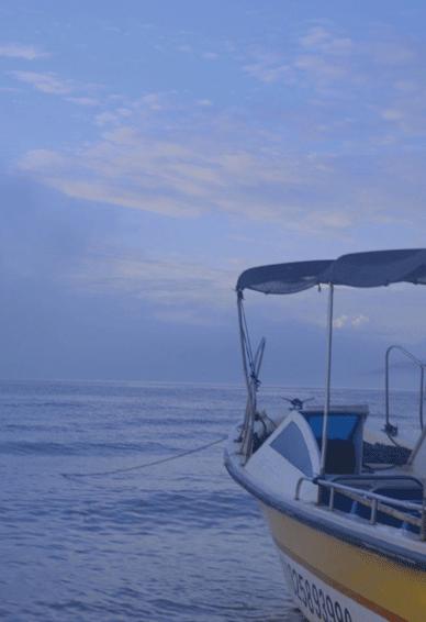 浪漫海边优美蓝色系个性皮肤 令人惊艳舒心的个性皮肤