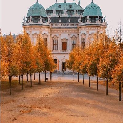 维也纳城市入秋好看的唯美图片 踏着轻快的步子走来了