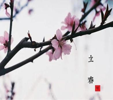 2021立春朋友圈文案怎么写大全-云奇网