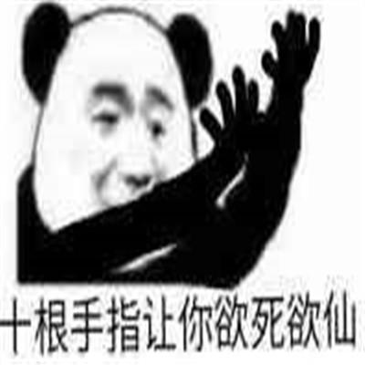 熊猫头最可爱有趣的表情包合集 请问你的心怎么走微信表情