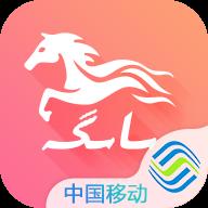 Bayge appv1.1.9 最新版