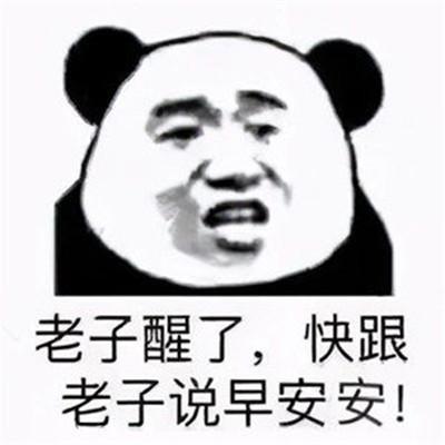 2021最新出炉的熊猫头表情包 表情包还是沙雕熊猫头好使