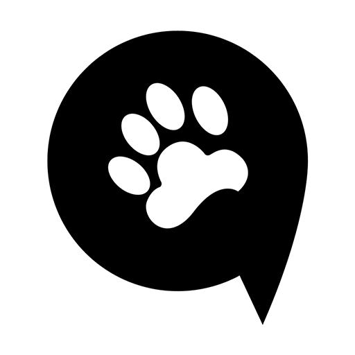 熊大叫车appv1.0.0 最新版